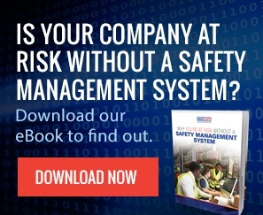 Why You're at Risk Download