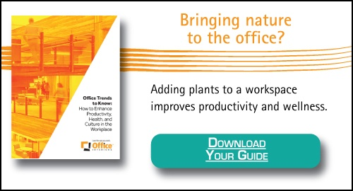 Biophillia, nature enhances productivity in the office