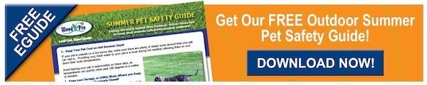 Buttons_Blog_Pet_Safety_Guide