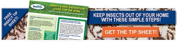 Free Home Insect and Pest Prevention Guide