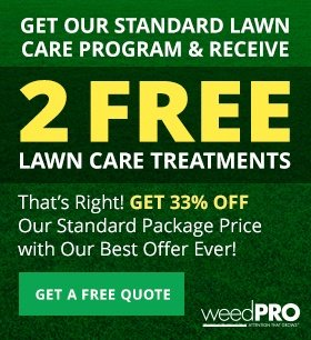 Save 33% On a Lawn Care Package