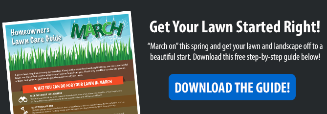 March Homeowners Lawn Care Guide