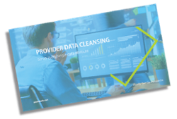 Provider Data Cleansing