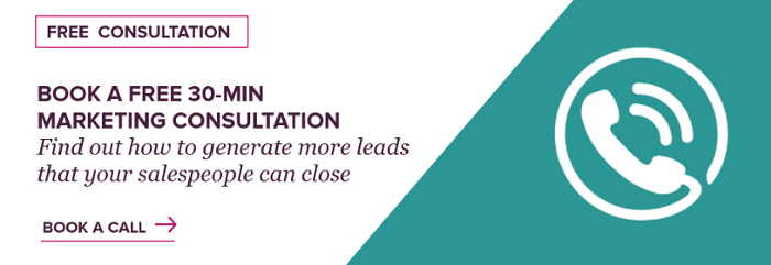 30 minute lead generation consultation