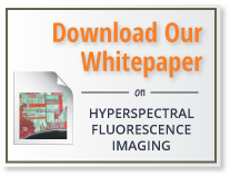 Download our whitepaper on Hyperspectral Fluorescence Imaging