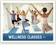 Click Here To View Our Wellness Classes