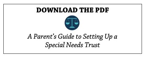 SNT Guide PDF
