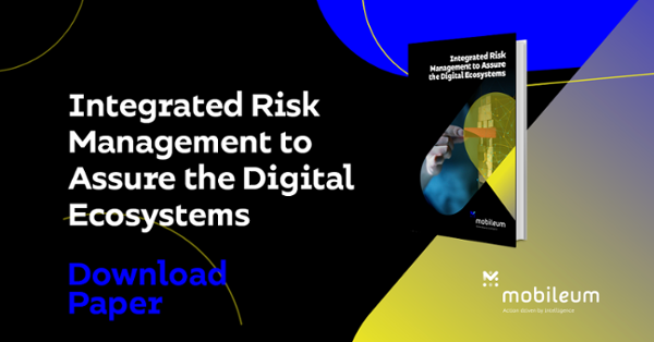 Integrated Risk Management to Assure the Digital Ecosystems