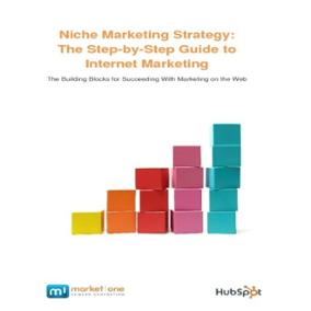 Market One Niche Marketing Strategy