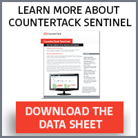 Learn More about CounterTack Sentinel