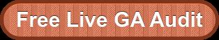 Free Live GA Audit