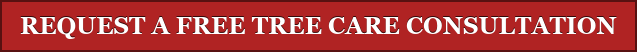 REQUEST A FREE TREE CARE CONSULTATION