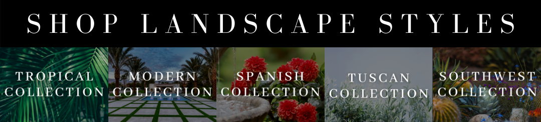 Shop the best landscape styles including Tropical, Modern, Spanish, Tuscan, and Southwestern