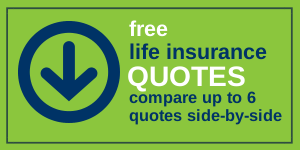Life Insurance Quotes Comparison Magnificent How Comparing Term Life Insurance Rates Online Can Lead To Big Savings