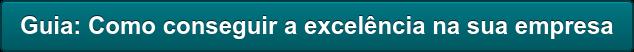 Guia: Comoconseguir a excelência na sua empresa