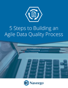 5 Steps to Building an Agile Data Quality Process