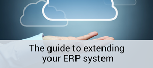 The guide to extending your ERP system
