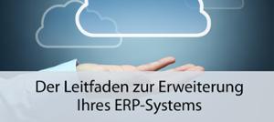 Whitepaper ERP erweitern