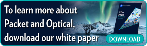 To learn more about Packet and Optical,  download our white paper