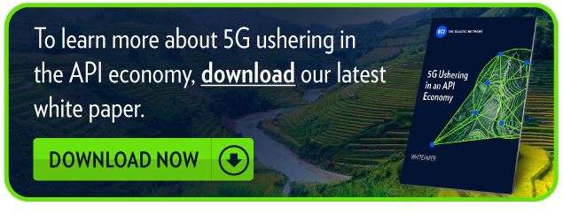 To learn more about how SDN and NFV come together in the ideal 5G network,  download our brochure