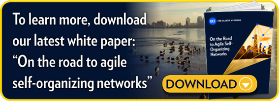 "To learn more, download our latest white paper:   ""On the road to agile self-organizing networks"""