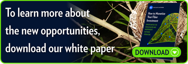 To learn more about the new opportunities, download our white paper