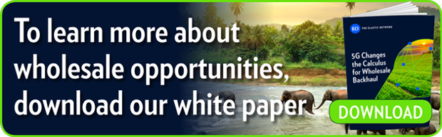 To learn more about wholesale opportunities,  download our white paper