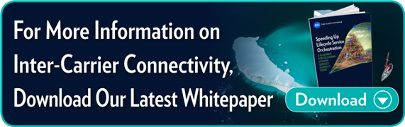 For More Information on Inter-Carrier Connectivity, Download Our Latest  Whitepaper.