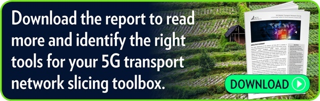 Download the report to read more  and identify the right tools  for your 5G transport network slicing toolbox.