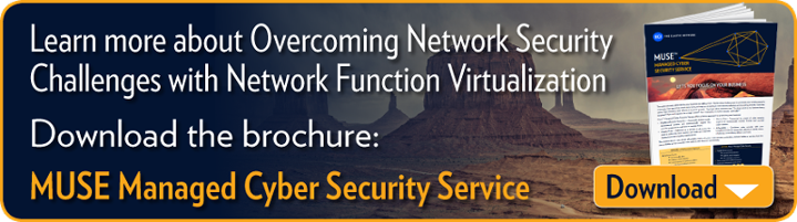 "To learn more about how NFV can help you offer cyber security to SMBs  download our latest brochure: ""LightSEC Managed Cyber Security Service"""