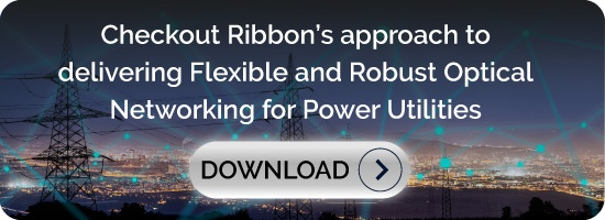 Checkout Ribbon's approach to delivering Flexible and Robust Optical  Networking for Power Utilities