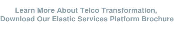 Learn More About Telco Transformation,  Download Our Elastic Services Platform Brochure