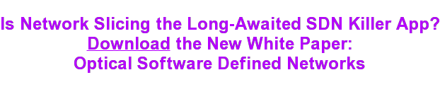 Is Network Slicing the Long-Awaited SDN Killer App?  Download the New White Paper:  Optical Software Defined Networks