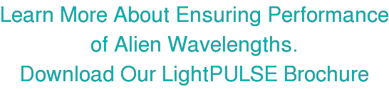 Learn More About Ensuring Performance of Alien Wavelengths. Download Our  LightPULSE Brochure