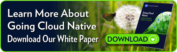 To Learn More About Going Cloud Native, Download Our White Paper