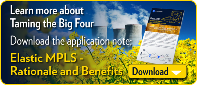Learn more about Taming the Big 4 Download the application note: Elastic MPLS - Rationale and Benefits