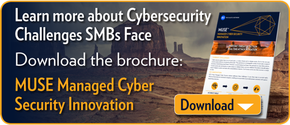 Learn more about the business case for addressing the security needs of the  SMB. Download the brochure: LightSEC Managed Cyber Security Innovation
