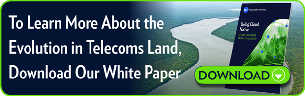 To Learn More About the Evolution in Telecoms Land,  Download Our White Paper