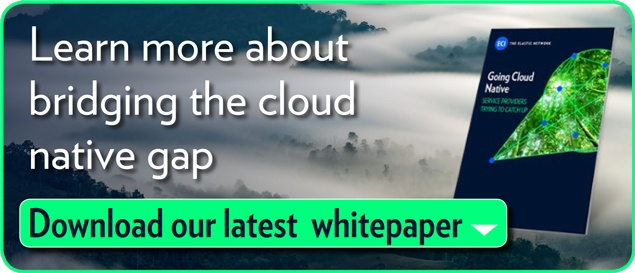 "To learn more about bridging the cloud native gap, download our latest white  paper ""Going Cloud Native"""