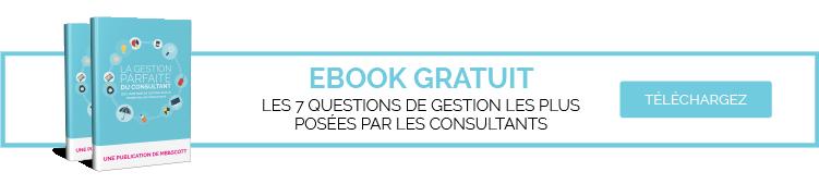 Ebook comptabilité consultant
