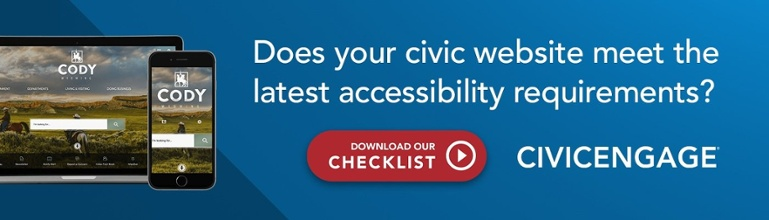 Website ADA Accessibility Checklist WCAG 2.0 A AA