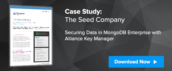 The Seed Company Case Study