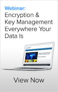 Click to request the webinar: Encryption & Key Management Everywhere Your Data Is