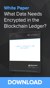 What Data Needs to be Encrypted in the Blockchain Ledger?