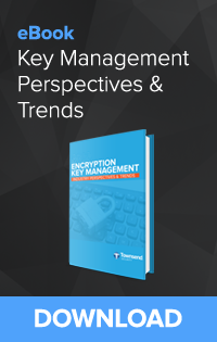 2016 Encryption Key Management Industry Perspectives and Trends eBook