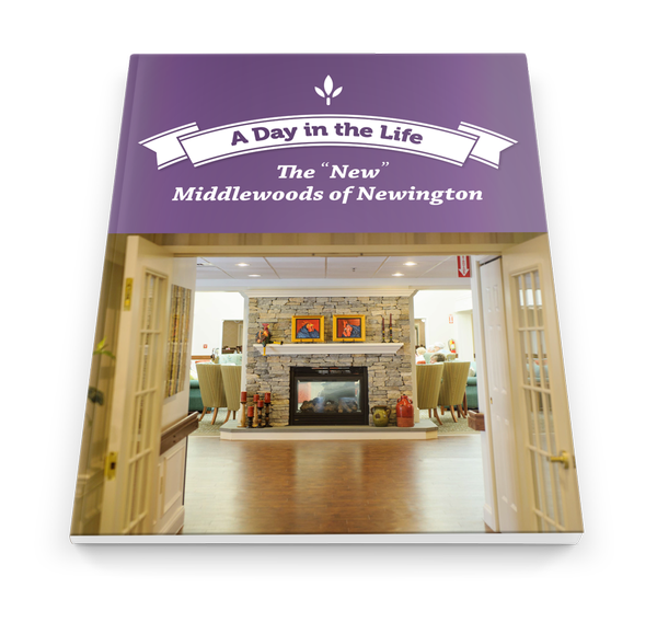 "The ""New"" Middlewoods of Newington Ebook"
