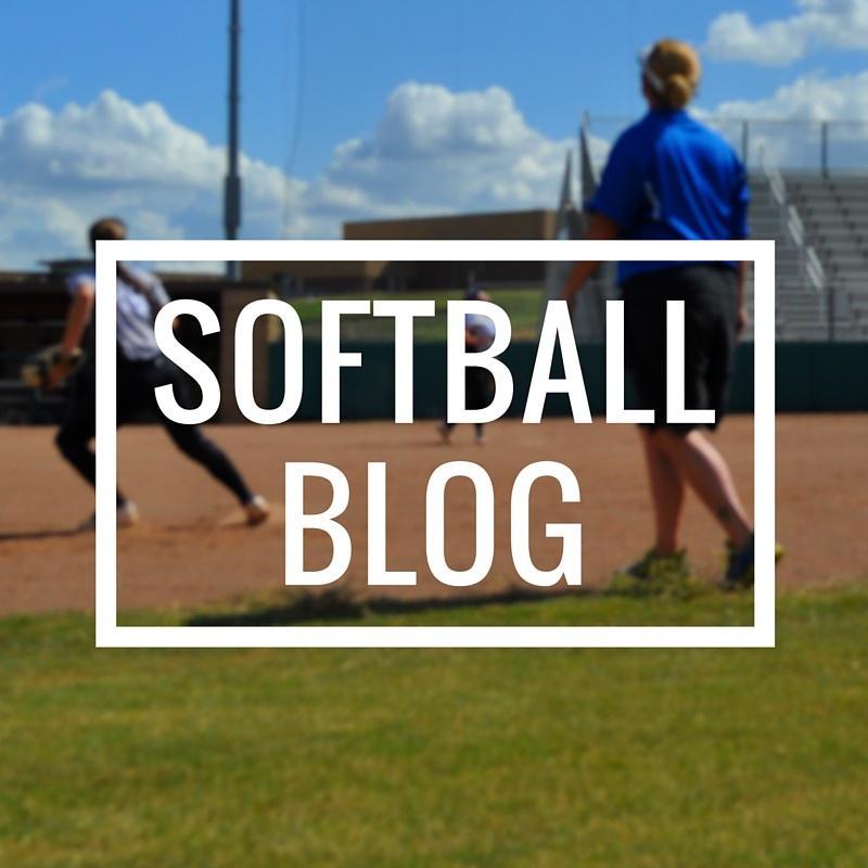 FungoMan-Softball-Blog