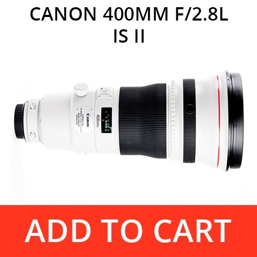 Canon 400 f/2.8L IS II