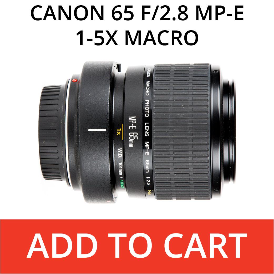 Canon 65 Macro