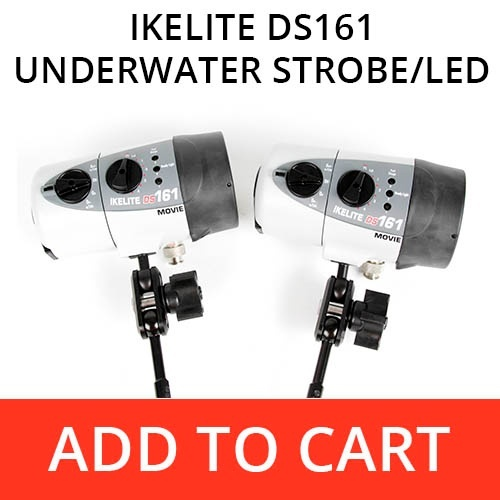Ikelite DS161 Underwater Housing